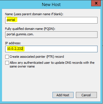 dns manager add portal