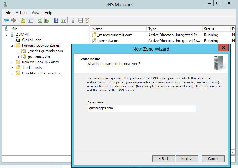 dns manager sharepoint app domain